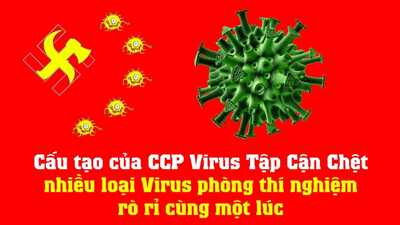 Cấu tạo của CCP Virus Tập Cận Chệt – nhiều loại Virus phòng thí nghiệm rò rỉ cùng một lúc