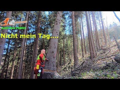 Fail wenn beim Holzfällen es nicht so läuft wie es soll… auch ich mache Fehler