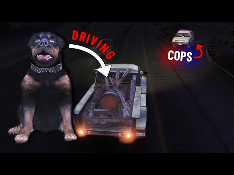 Cooter Hijacks And Hijinks [REPORTER & DEMON DOG RP] (GTA Role Play Highlights #22)