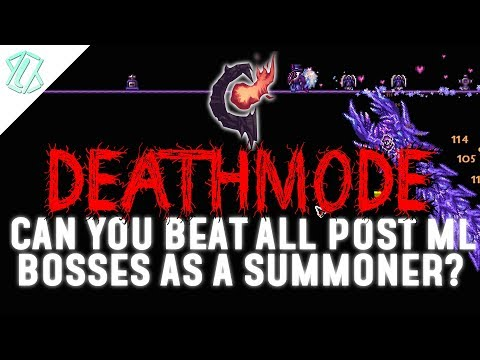 All Post Moonlord Bosses as a Summoner! (Calamity Deathmode, Is Summoner viable?)