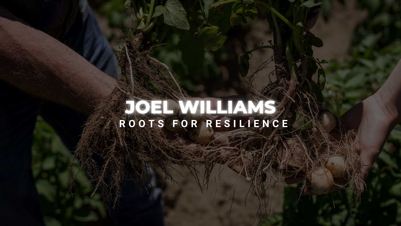 Roots for Resilience with Joel Williams