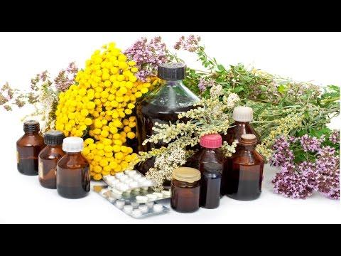 Curso Manejo Sanitário de Bovinos para Produção Orgânica de Leite - Cultivo de Plantas Medicinais