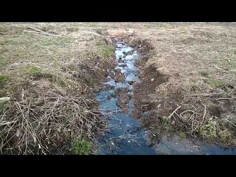 Волинські Новини: Злив нечистот у річку Чорногузку|ІА Волинські Новини