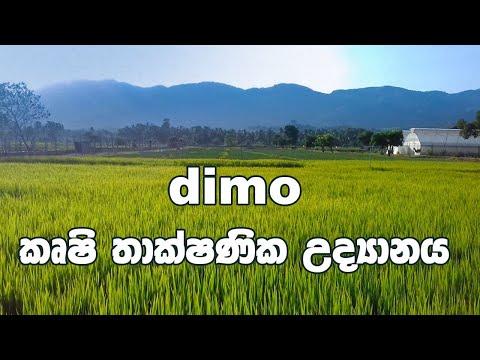 DIMO Agri Techno Park
