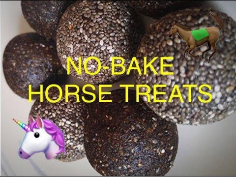 Vetionx No-Bake Equi-Chia Horse Treats | PUT TO THE TEST
