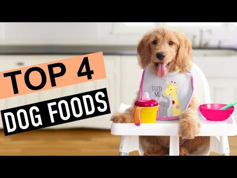 BEST 4: Dog Foods 2018