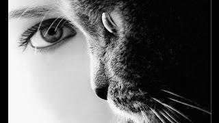 Кошка спасла от призрака | СТРАХ ЗДЕСЬ