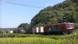 東北本線 白坂駅付近上り 金太郎貨物列車他