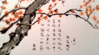 ♫ 琵琶語 Pipa Yu - The Language of Pipa (Guzheng & Guitar 古筝与吉他)