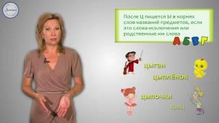 Русский 2 Написание Ы после Ц в окончаниях слов названий предметов