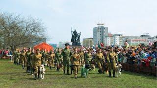 Применение собак в годы войны, 9 мая 2017 Пермь, ЦС ПК и ФСПС
