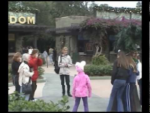 Devine at Animal Kingdom, Disney World