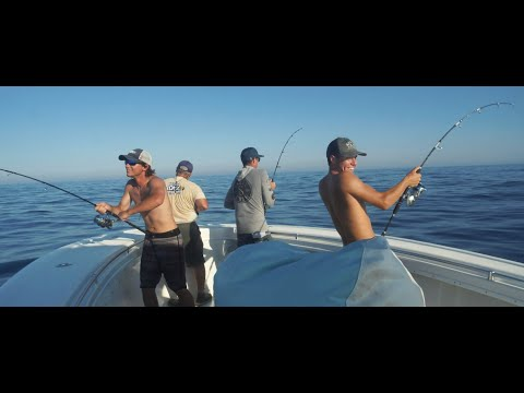 TackleDirect Pro Staff Series: Tuna Mayhem Ft. Shore Catch Guide Service
