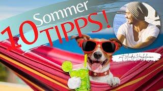 10 Dinge, die deinem Hund im Sommer richtig gut tun!