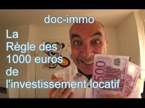 investissement immobilier 1000 euros