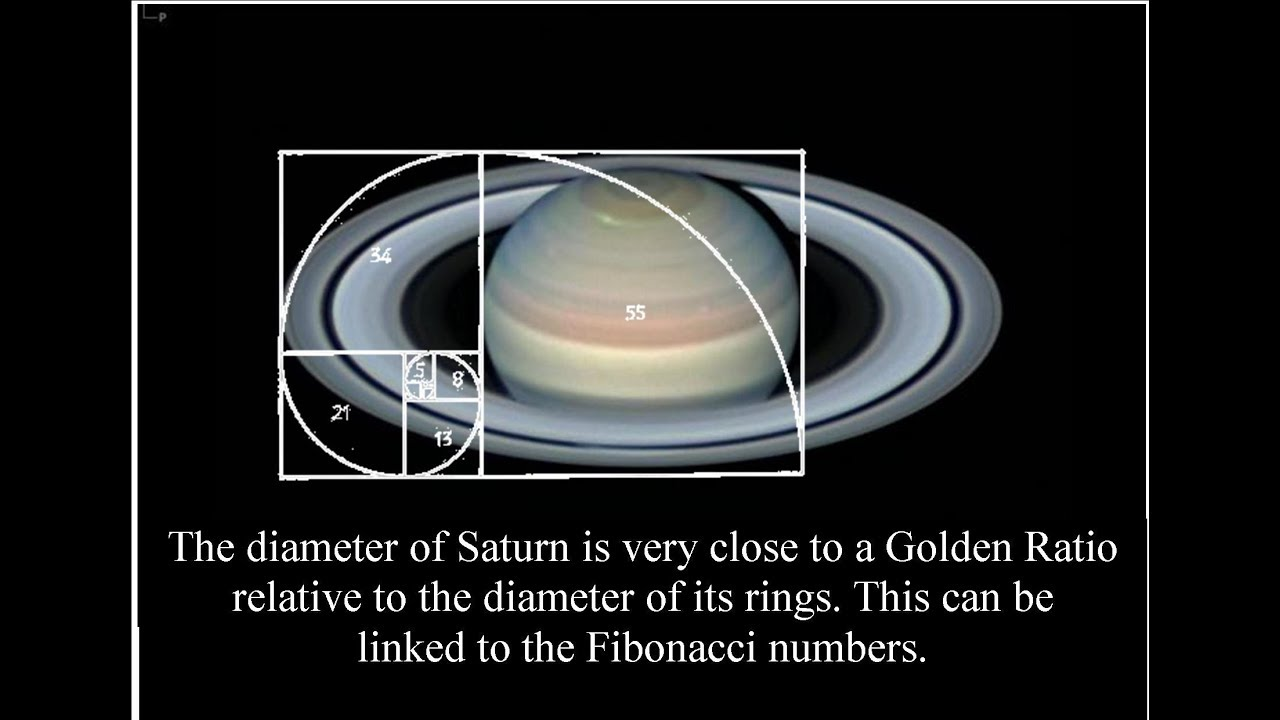 Image result for fibonacci sequence saturn""