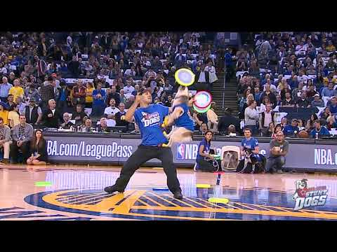 NBA HALFTIME FRISBEE DOG SHOW (Golden State Warriors)
