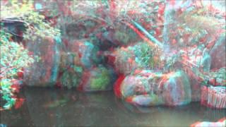 葛城山の3D写真のスライドショーです。 赤青メガネだけで立体的に見るこ...