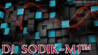 HOUSE BEAT TITANIC 2020 NONSTOP DJ SODIK-M1 ( BATAM ISLAND)