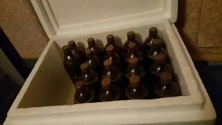 Пиво из концентрата Coopers IPA