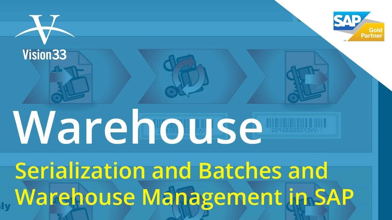 Basic Inventory Process: Serialization and Batches | Part 2