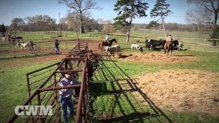 Cowboy Way Ministries -