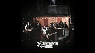 Sentimental Moods - LAST MESSAGE (Official Music Video)