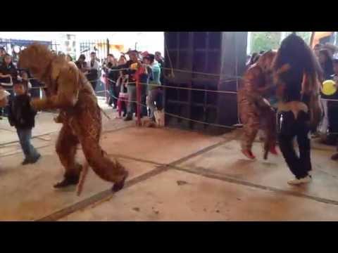 Danza de los Lobitos San Nicolas Coatepec 10/SEP/16