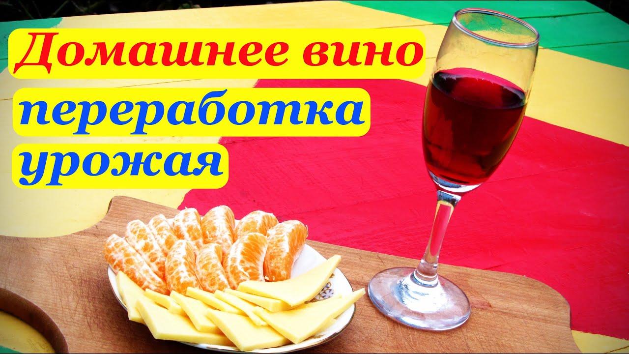 Домашнее вино, переработка винограда