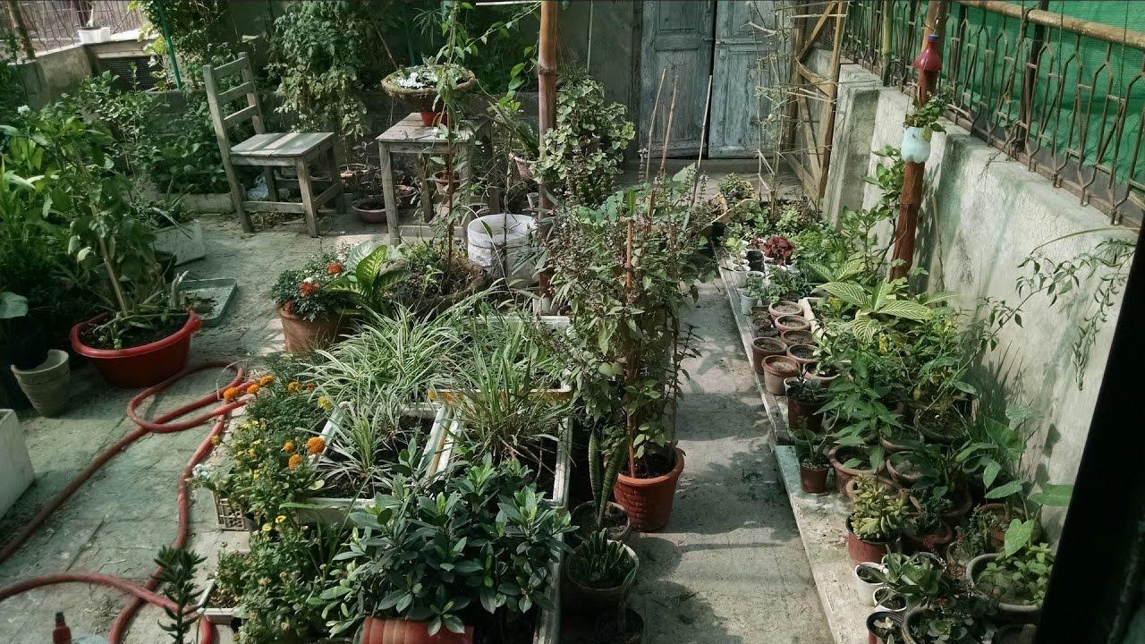 Kitchen Garden Overview | Garden in Home Ideas| May-2017 | Gardening ...
