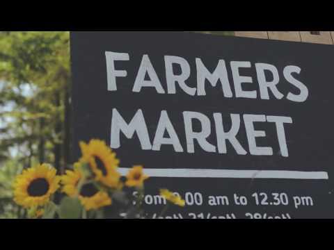 Farmers Market 2018 July 14th / EOS Kiss M 4K