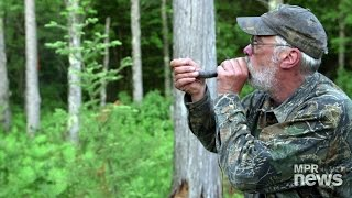Hunting for Bigfoot in northern Minnesota