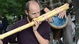 Asijska hudba, indicka hudba / citar, jambe, fletna
