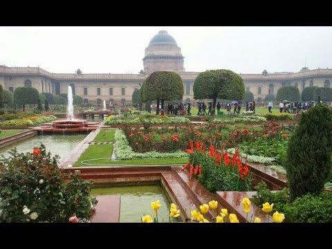 Rashtrapati Bhawan's Mughal Gardens to showcase Tulip as major attraction