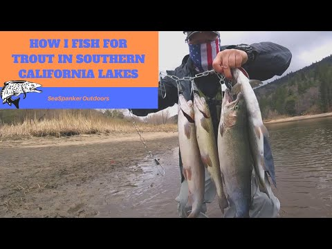How I Fish For Trout In Southern California Lakes