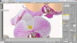 Уроки 3d max - Вебинар по 3Ds max - моделирование орхидеи, книг, студии и стен в 3Ds Max