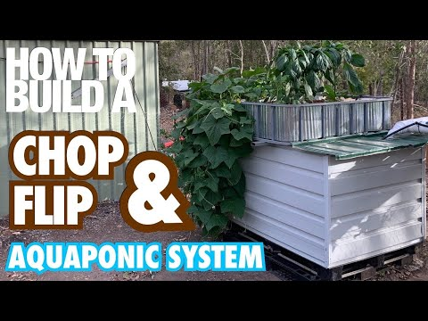 How to Build a Chop & Flip, Flood & Drain Aquaponic/Hydroponic System