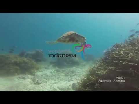 Underwater Treasure of Komodo National Park
