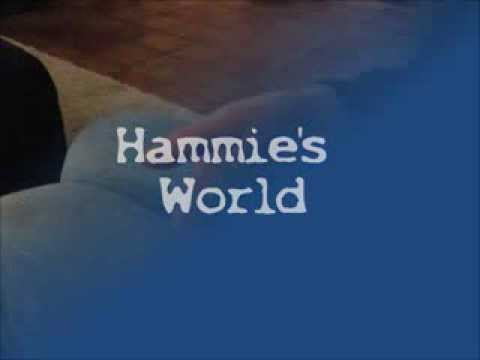 Hamster Parcours voor Sid- Hammie\'s World - YouTube