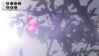 MaHi - Moving Forward (Original Mix)