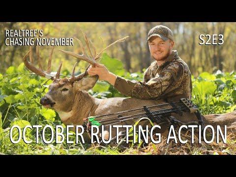 Rattling In a Rutting Buck   Chasing November S2E3