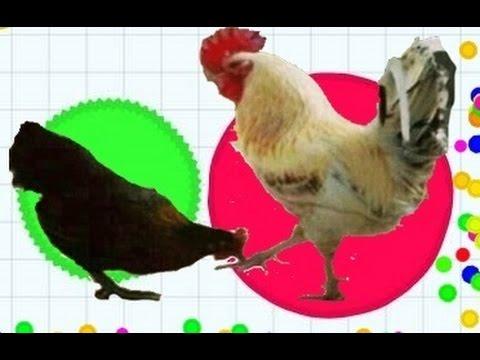 Agar.io - TROLLING PEOPLE In Agar.io // Crazy Rooster !