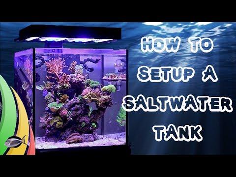 How to set up a saltwater fish tank aquarium youtube for How to start a saltwater fish tank