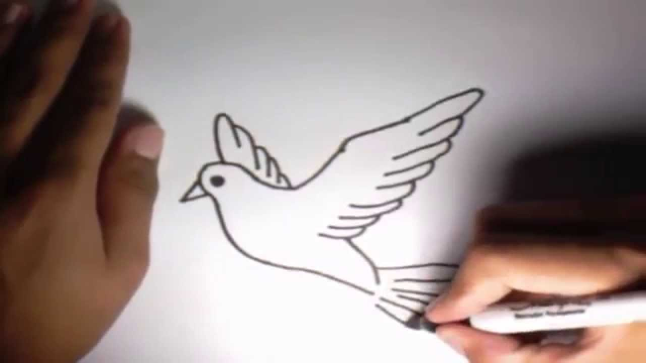 Como Dibujar Una Paloma L How To Draw A Dove Youtube