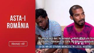 Asta I Romania14.07 Romania Gura De Oxigen Pentru 20.000 De Straini Care Muncesc In Locul Nostru