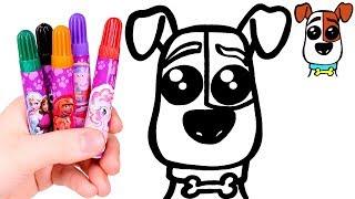 SECRET LIFE OF PETS 🐶🎨 Draw and Color Kawaii Max