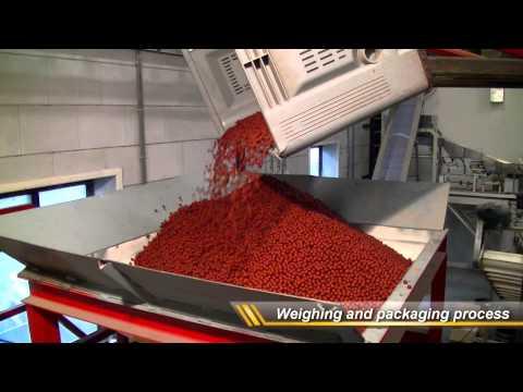 KCB INTERNATIONAL Boilie production - The next level