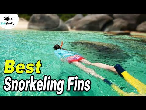 best-snorkeling-fins-–-our-top-choices-for-2020-&-buyer's-guide