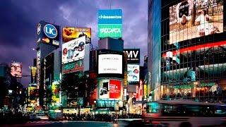 Программа для рекламного агентства