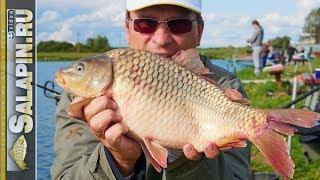 Рыбалка с фидером на карпа на платнике (видео с мастер-класса) [salapinru]